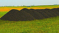 As Uses of Biochar Expand, Climate Benefits Still Uncertain by Mark Hertsgaard: Yale Environment 360 | Sustainable Futures | Scoop.it