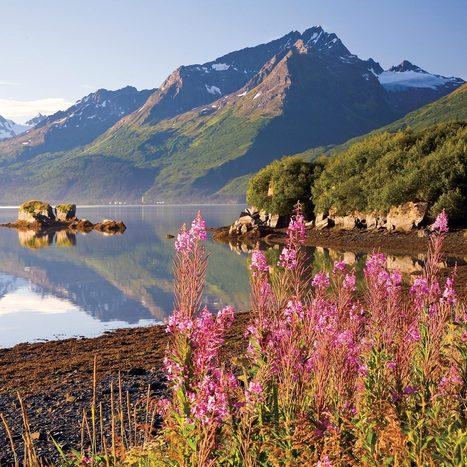 Travel Alaska - Official State of Alaska Travel & Vacation Information | Alaska | Scoop.it
