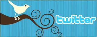 Twitter en bibliothèque : usages et pratiques   à livres ouverts   bibbiuteca   Scoop.it