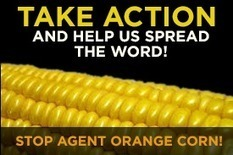 Call for Comments on USDA Approval of Agent Orange Corn | Environment & Sustainability | Scoop.it