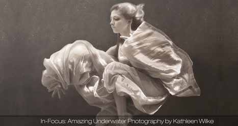 In-Focus: Amazing Underwater Photography by Kathleen Wilke   ciberpocket   Scoop.it