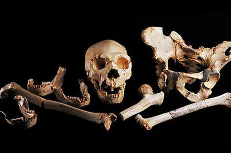 Le plus vieil ADN humain au monde est espagnol - Radin Rue   Evolution de l'Homme   Scoop.it