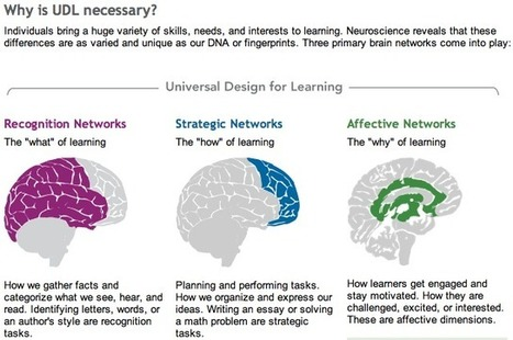UDL and Personalized Learning | Barbara Bray - Rethinking Learning | UDL - Universal Design for Learning | Scoop.it