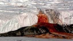 Le secret des ''cascades de sang'' de l'Antarctique bientôt révélé ? | Chronique d'un pays où il ne se passe rien... ou presque ! | Scoop.it