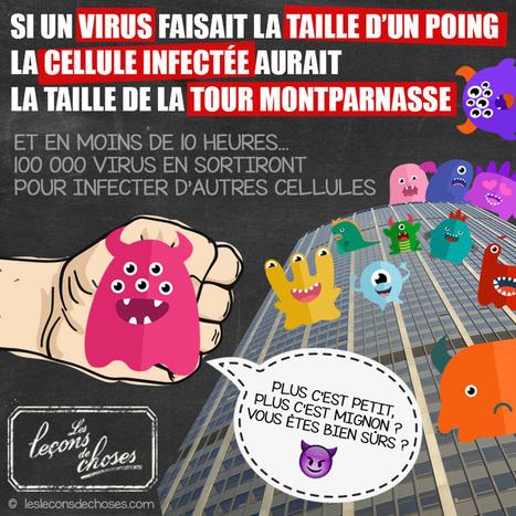 Rencontre avec un chasseur de virus | C@fé des Sciences | Scoop.it