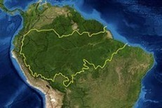 Deforestation Amazon biome at standstill | Ecology | Scoop.it