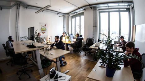 12 Signs Your Company Has An Enviable Workplace Culture   Corporate Wellness   Scoop.it