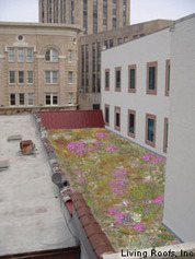 A Vision Of Green Roofs In Durham, NC - American Rivers (blog) | Vertical Farm - Food Factory | Scoop.it