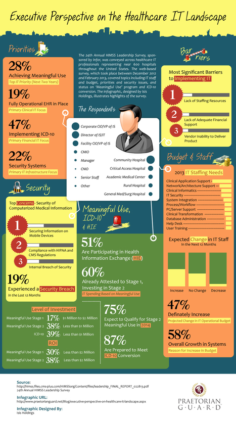 Executive Perspective on the Healthcare IT Landscape   Security Infographics   Scoop.it