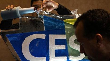 Pendant que l'hexagone déprime, les start-up françaises font le show au CES de Las Vegas | News, Innovative Idea & energy | Scoop.it