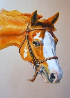 Life Behind the Canvas: Artist Liz Weyer | Horseback Riding | Scoop.it