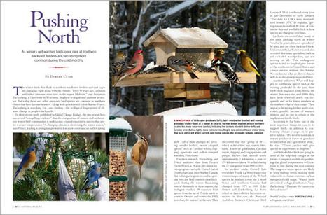 Birds Moving North - National Wildlife Federation | wildlife | Scoop.it