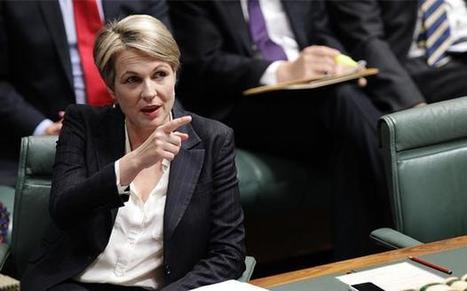 Tanya Plibersek Will Push Labor For Compulsory Same-Sex Marriage Support | Psycholitics & Psychonomics | Scoop.it
