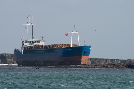 Ship crashed after 'captain forgot about Englishcoast' | Mr. Henderson's Geography | Scoop.it