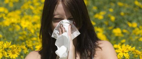 On peut remercier (ou pas) l'homme de Néandertal pour nos allergies | GénéaKat | Scoop.it