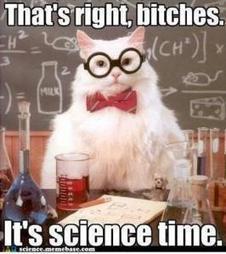 L'importance de la stupidité dans la recherche scientifique | Per Perec | Scoop.it