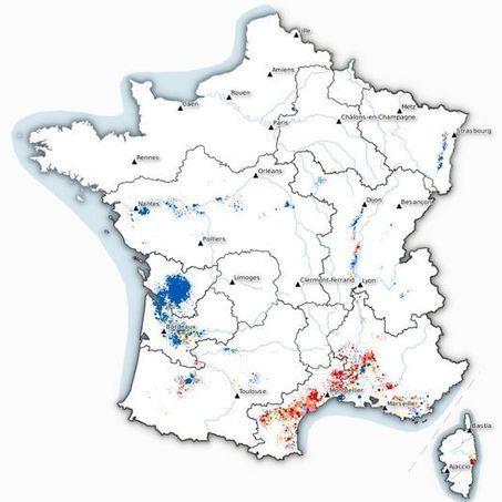 Pourquoi le vin compte autant pour la France, en septgraphiques. | Verres de Contact | Scoop.it