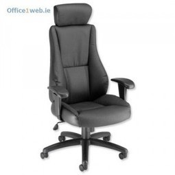 You dont have to be an executive to enjoy a nice leather chair. / 1Life Blog | Ofice Supplies Ireland | Scoop.it