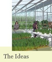 Zero Acreage Farming - Urban Agriculture of the Future | Vertical Farm - Food Factory | Scoop.it