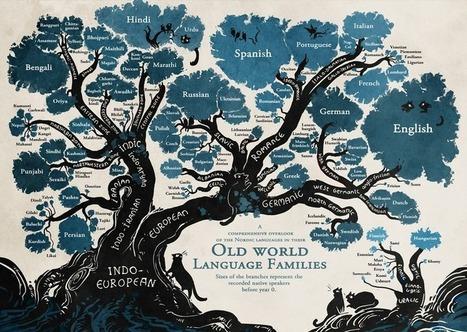 L'albero genealogico che spiega da dove viene la lingua che parliamo | Généal'italie | Scoop.it