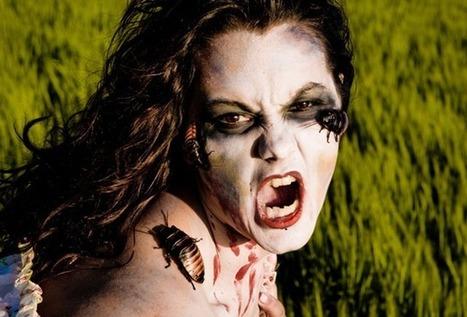 Pourquoi les cafards sont plus résistants que les zombis ? | Le petit musée des cafards | Scoop.it