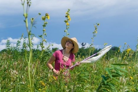 The Academic Decline: How to Train the Next Generation of Botanists | Botany teaching & cetera | Scoop.it