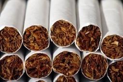 Estudio liga más muertes y enfermedades al tabaquismo | educación física y deporte | Scoop.it