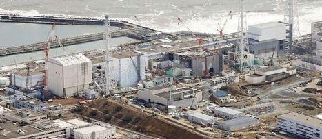 [Fukushima 4 ans] Revue de Presse/Web | Japon : séisme, tsunami & conséquences | Scoop.it