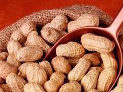 Peanuts axed from sale because packs lacked nuts warning | UK | News | Daily Express | Peanuts, bioactive superfood in a shell | Scoop.it