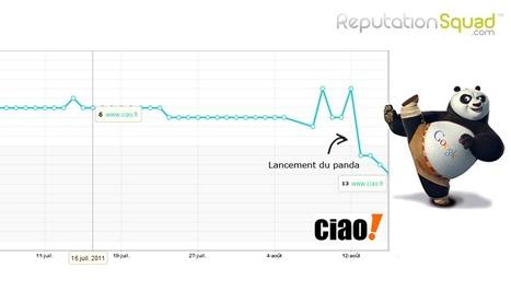 Google panda s'intéresse à votre E-reputation | Agence E-reputation - Reputation Squad | CuraPure | Scoop.it