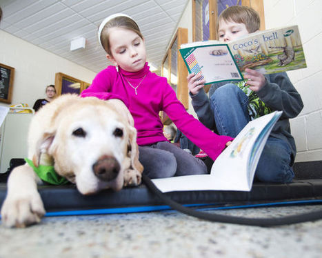 Spotlight on children and therapy dogs - St. Catharines Standard | Animals R Us | Scoop.it