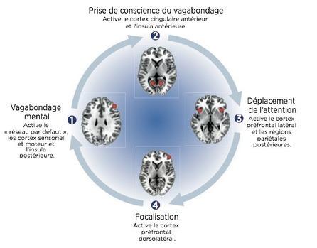 La sophrologie pour préparer les examens | Nath... | Sophrologie | Scoop.it