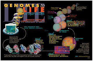 Synthetic Biology: Advancing the Design of Diverse Genetic Systems | SynBioFromLeukipposInstitute | Scoop.it