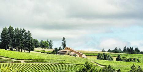 L'Oregon, un eldorado bourguignon | Vin 2.0 | Scoop.it