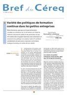 Variété des politiques de formation continue da... | Formation professionnelle | Scoop.it