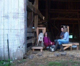 Goat Farming Information and Resources | Raising Goats | Scoop.it