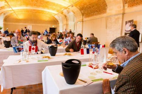 Concours Mondial du Sauvignon - Press Release | Planet Bordeaux - The Heart & Soul of Bordeaux | Scoop.it