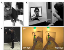 Virtual bodyswapping diminishes people's negative biases about others | The brain and illusions | Scoop.it