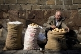 FAO - News Article: Europe and Central Asia not without nutrition woes | Feed Humanity | Scoop.it