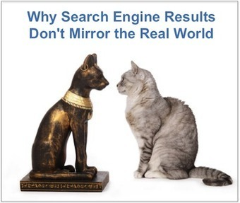 Search Engine Results Don't Mirror the Real World | Business in a Social Media World | Scoop.it
