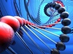 Next generation sequencing improved by genome mapping | Billion Genomes Project | Scoop.it