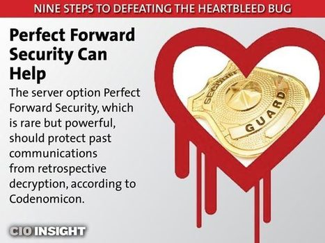 Nine Steps to Defeating the Heartbleed Bug | Digital-News on Scoop.it today | Scoop.it