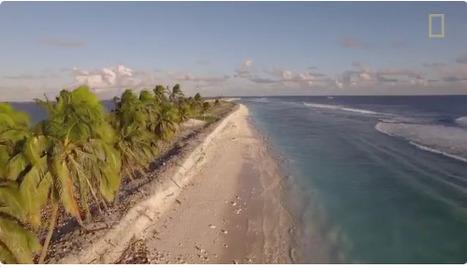 Une nouvelle aire marine protégée : L'île de Clipperton - Ministère de l'Environnement, de l'Energie et de la Mer   Périples et pérégrinations   Scoop.it
