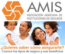 Nueva opción para la alfabetización digital en México - Mexican Business Web | SocTec | Scoop.it
