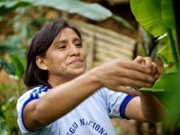 The coffee farmers in Peru adapting to climate change - The Ecologist | Climate | Scoop.it
