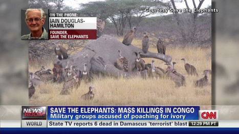 Poaching on the rise in Africa – CNN Newsroom - CNN.com Blogs | Illegal Wildife Trade | Scoop.it