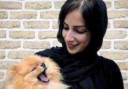 Iran set to ban dogs from public places or being driven around in cars - New York Daily News | dogs | Scoop.it