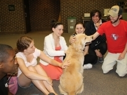 Therapy Dogs' Presence Steadily Grows in Libraries | Dogs and People | Scoop.it
