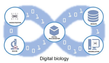 The Promise and Challenge of Digital Biology | SynBioFromLeukipposInstitute | Scoop.it
