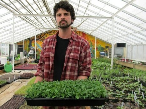 New Business: Sprout Food And Farms - My veronanj | Vertical Farm - Food Factory | Scoop.it